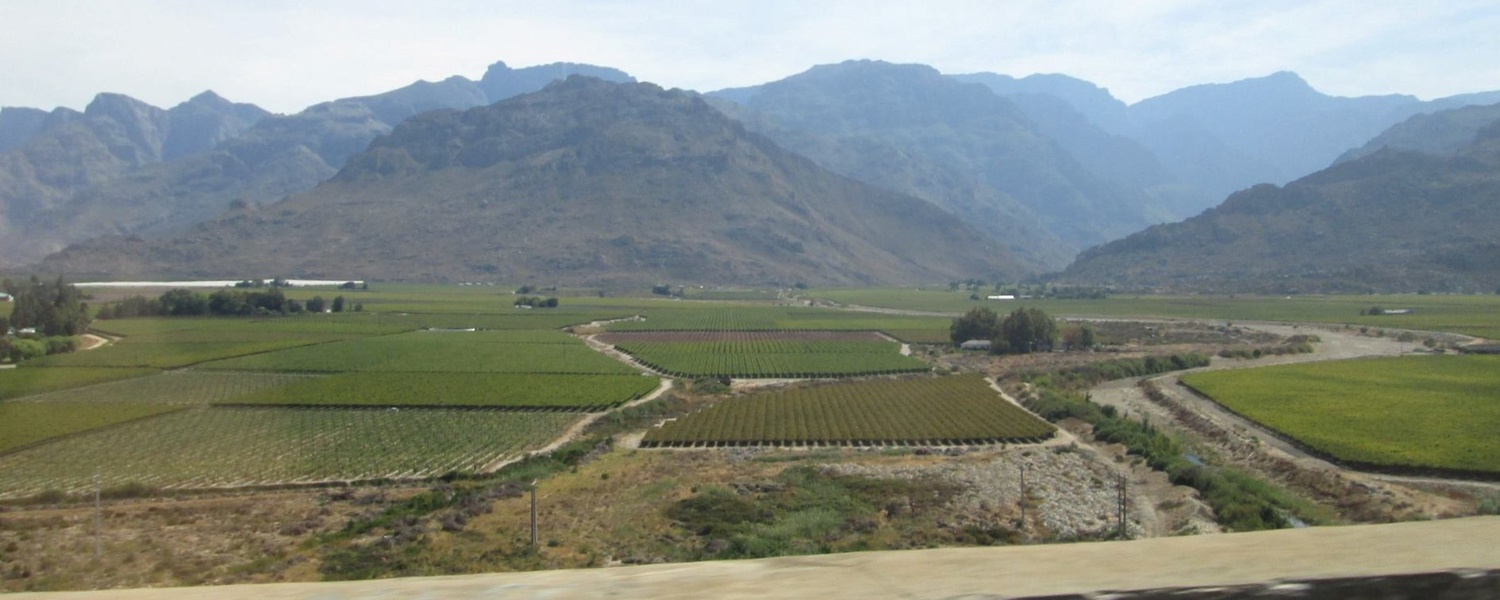 An aerial photo of vineyards and mountains in the Breede Valley